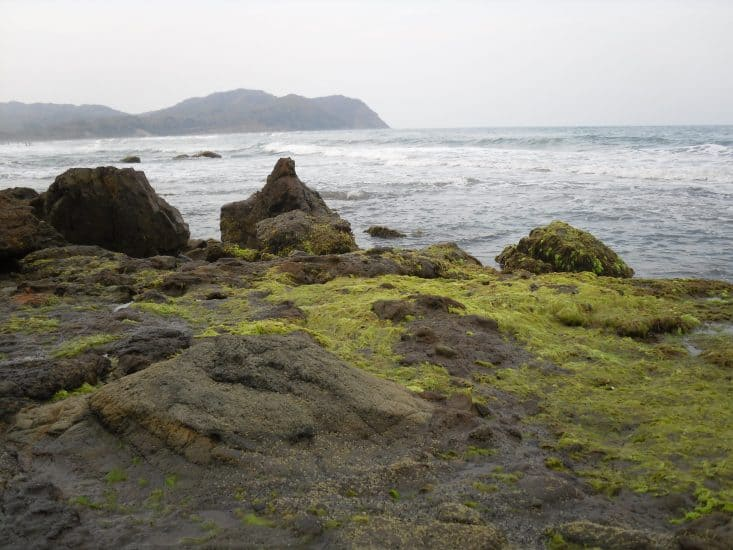 Playa La Mancha en Veracruz
