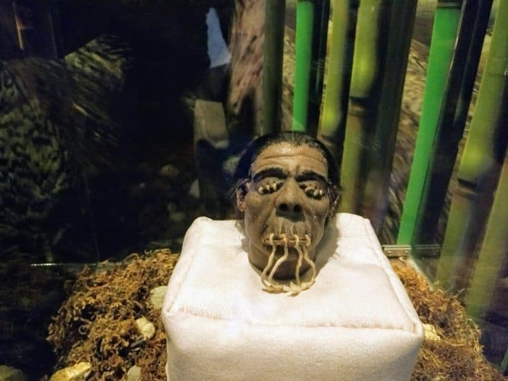 Museo de Ripley en Veracruz puerto