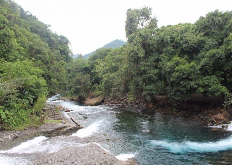 Descabezadero En Actopan Veracruz