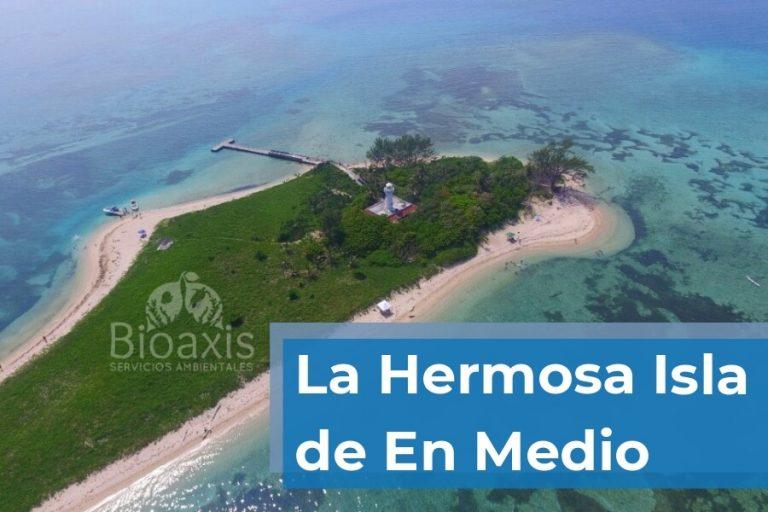 Conoce la Isla de enmedio en Veracruz