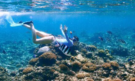 Tour de snorkel por Isla Verde o Blanquilla