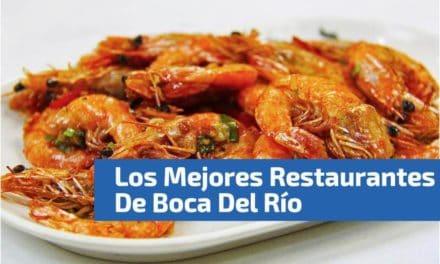 Los 21 mejores Restaurantes en Boca del Río Veracruz