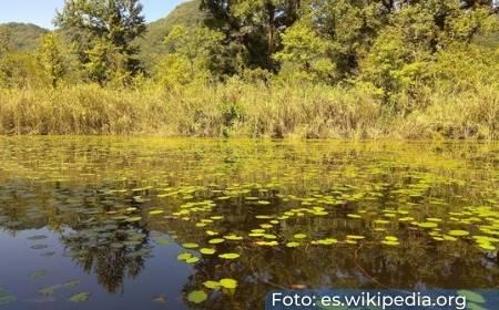 Vista de La laguna de Santo Domingo