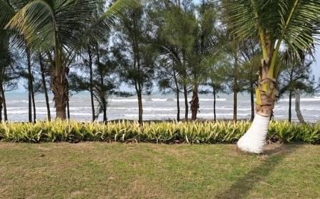 Vista de Playa La Guadalupe