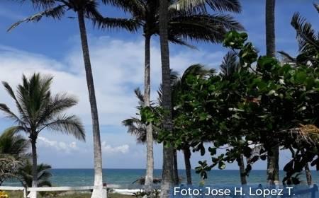 Vista de Playa La Vigueta