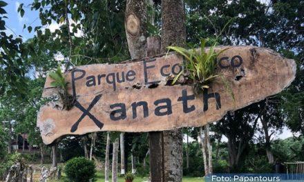 Eco Park Xanath